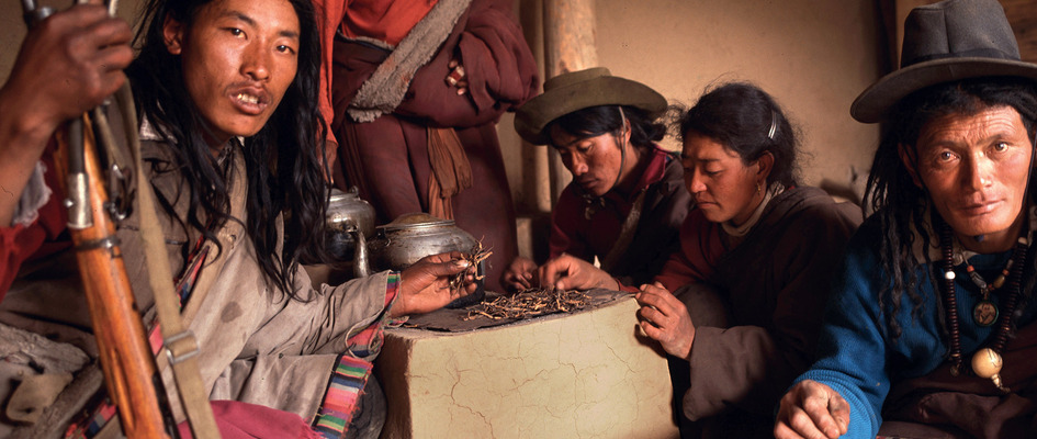Gunsa and fungal gold. These nomads from central Tibet sell the yarsagumba fungus, prized for its aphrodisiac properties, to Chinese traders in Lhasa.