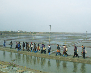 Early in the morning, workers set off to collect shellfish on the polder (dyke) site. Only 16 per cent of the country is arable land and much of it is exhausted; consequently the State has backed polder construction since the early 1950s to create land suitable for rice cultivation. There are now more than 300,000 hectares of reclaimed land. But the polders require constant upkeep.Photo: Alina Paul/Jérôme Bossuet