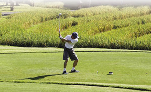 Tee time in Bali: a tourist plays golf from a tee surrounded by paddy fields. Farmland is being sacrificed to make way for development – leading to soaring food prices.