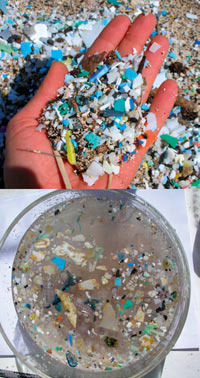 Plastic bits mixed with beach sand (top); 'plastic soup' (bottom) dredged from the Pacific.Photo: Algalita Marine Research Foundation