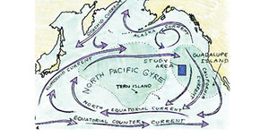 The North Pacific 'gyre' – a vast whirlpool stretching from California to Japan that keeps garbage, mostly plastic, circulating in its currents for decades. Sailing ships were often trapped for weeks here and tried to lighten the load by dumping extra cargo, including livestock. Thus the name: 'horse latitudes'.Illustration: Patricia J Wynne