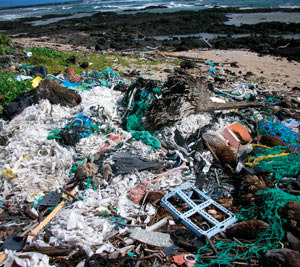 Kamilo Beach, Hawaii the most polluted beach in the US. A picturesque, volcanic coastline – entirely covered in plastic debris. Photo: Algalita Marine Research Foundation