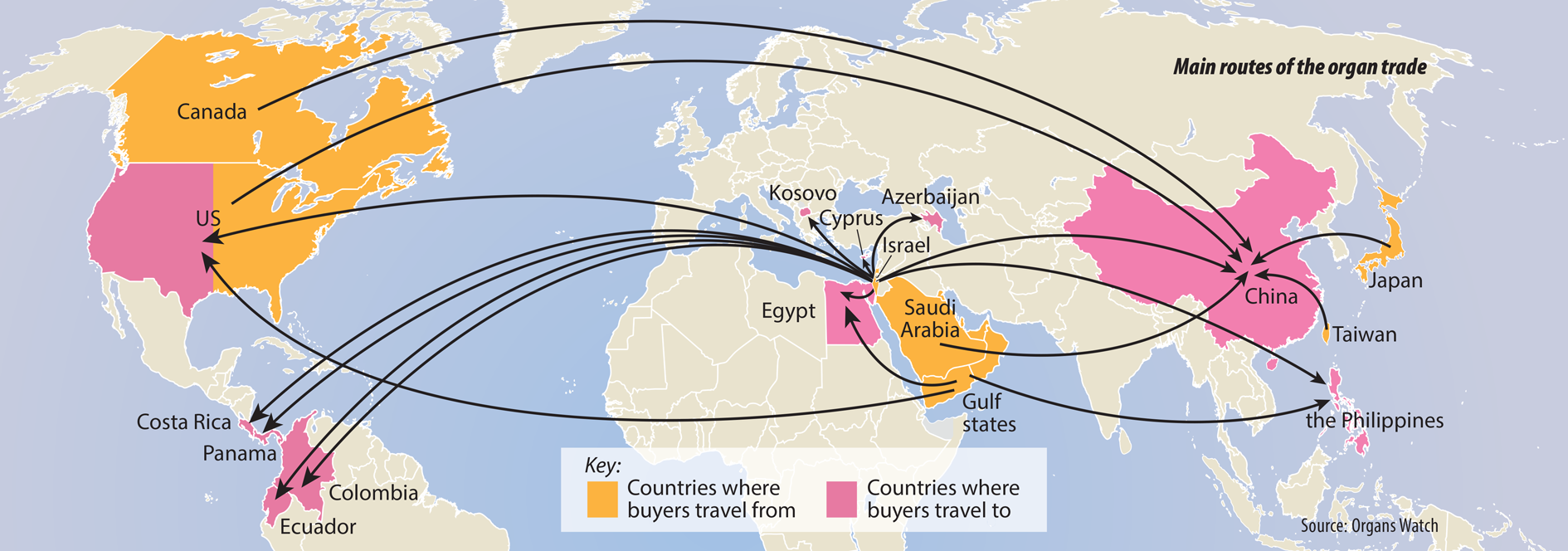 Map routes of the organ trade.