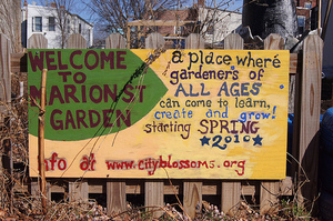 Bringing urban gardeners together in Washington DC.Photo by tedeytan under a CC Licence