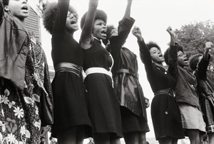 The Black Panthers – most of its activists were women.