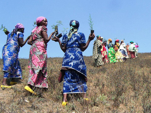 Women leading reforestation efforts in South Kivu Province, Democratic Republic of Congo.Photo: Neema Namadamu