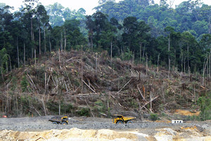 Clearing for a coal mine, central Kalimantan forest.