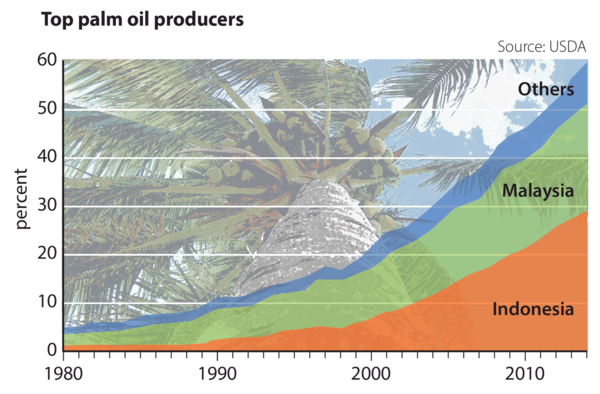 Top palm oil producers - Indonesia accounted for over 30 per cent of palm oil production in 2014. Combined with Malaysia's total, the two accounted for about 85 per cent of production.