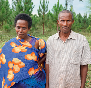 Ugandan cattle herder Lawrence Kamonyo and his wife, flanked by rows of pine trees planted by the German company Global Woods. The wood is certified but Kamonyo lost his land and his livelihood.