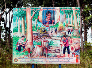 Don't even think about it: a sign in Mondulkiri province in eastern Cambodia warns against illegal logging. Photo: Bjorn Svensson/Alamy