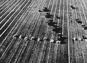 The Russian harvest - more than 30 million tons down on target this year.