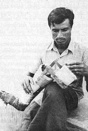 Marntaz's sophisticated bamboo leg.