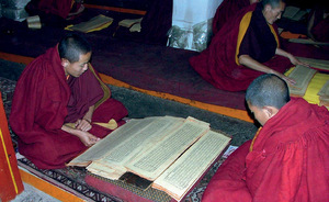 Our words: trainee monks read Tibetan holy texts.