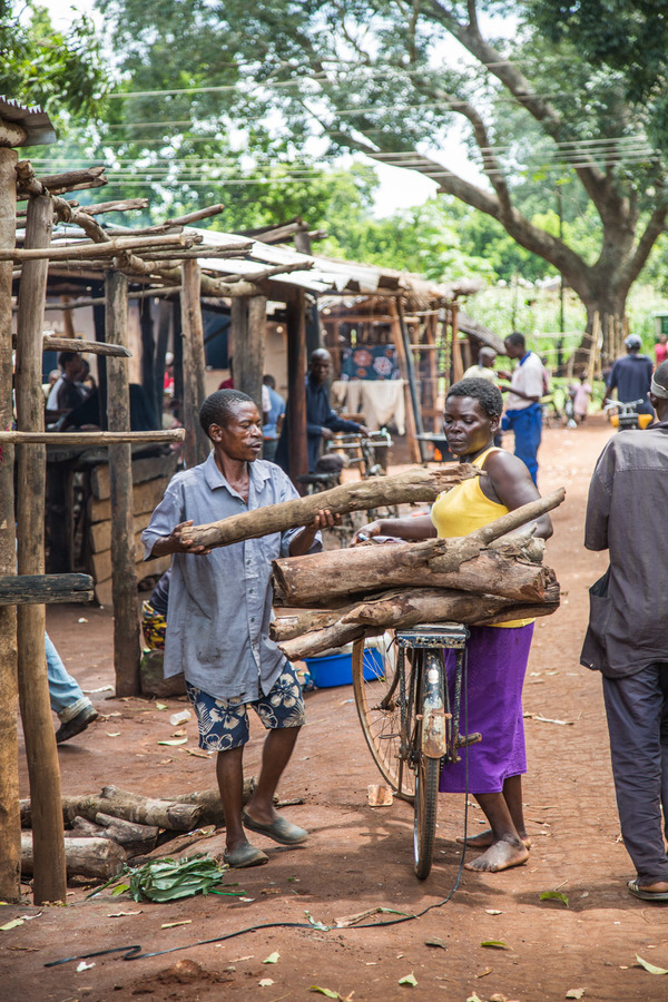 Most rural households can't afford to buy firewood but have to rely on 'free' resources.