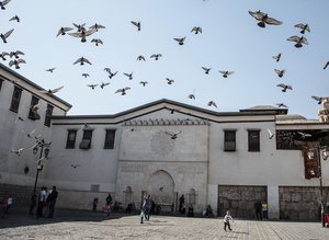 Pigeons outside Damascus' Umayyad Mosque take flight at the sound of nearby bombing in besieged suburbs Jobar and Eastern Ghouta.