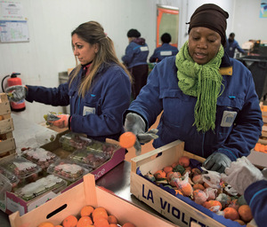 Unsaleable fruit at the wholesale food market of Rungis, Paris, gets sorted so that what is still usable can go to food banks.Photo: Martin BUREAU/AFP/Getty