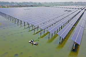 A fisher catches crayfish near a canopy of solar panels in Yangzhou. China has quickly become the world's poster-child for renewables.Photo: Meng Delong/Getty
