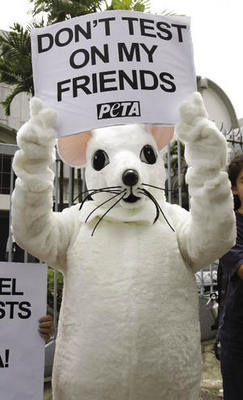 PETA's action in the US.Lai Seng Sin / AP / Press Association Images