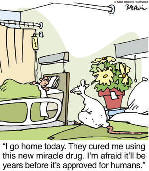 Is animal testing necessary to advance medical research? www.CartoonStock.com