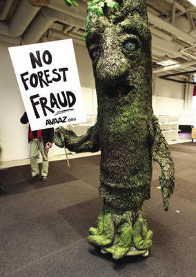 Tree time: an Avaaz activist at 2009's Climate Change Conference in Copenhagen.Bob Strong/Reuters
