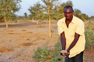 Perfect for peanuts. Oumar Ba is working to restore the sandy soils of the Sahel in Ndiob district, Senegal.Photo: Hazel Healy/New Internationalist
