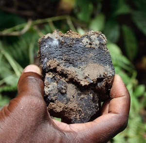 Dark material: a lump of bitumen found in Congo.