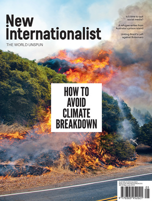 NI 519 - How to avoid climate breakdown - May, 2019