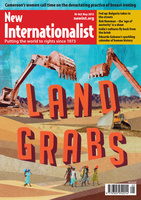 Land grabs - May, 2013