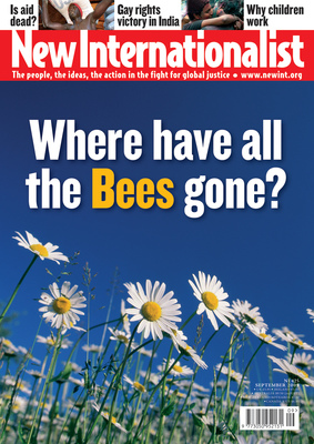 NI 425 - Where have all the Bees gone? - September, 2009