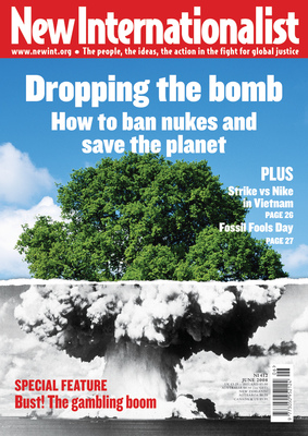 NI 412 - Dropping the bomb - June, 2008